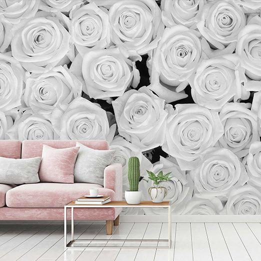 Weiße Rosen Fototapeten DD115108